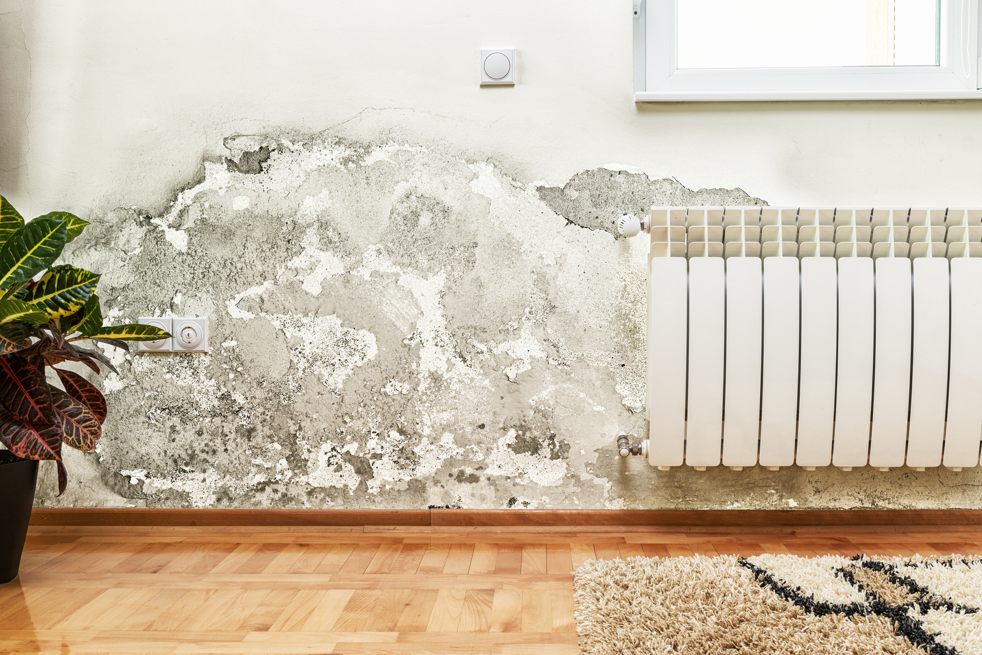 4 Ways Jacksonville Fl Landlords Can Avoid Costly Repairs